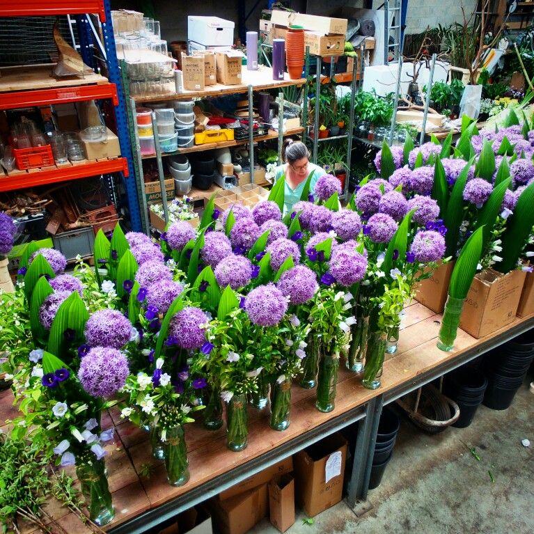 pr parations pour le stade de france flower shops pinterest garden. Black Bedroom Furniture Sets. Home Design Ideas