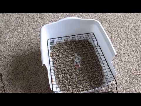 Rabbit Litter Box Custom Made Diy Scatterless With Grid Grate