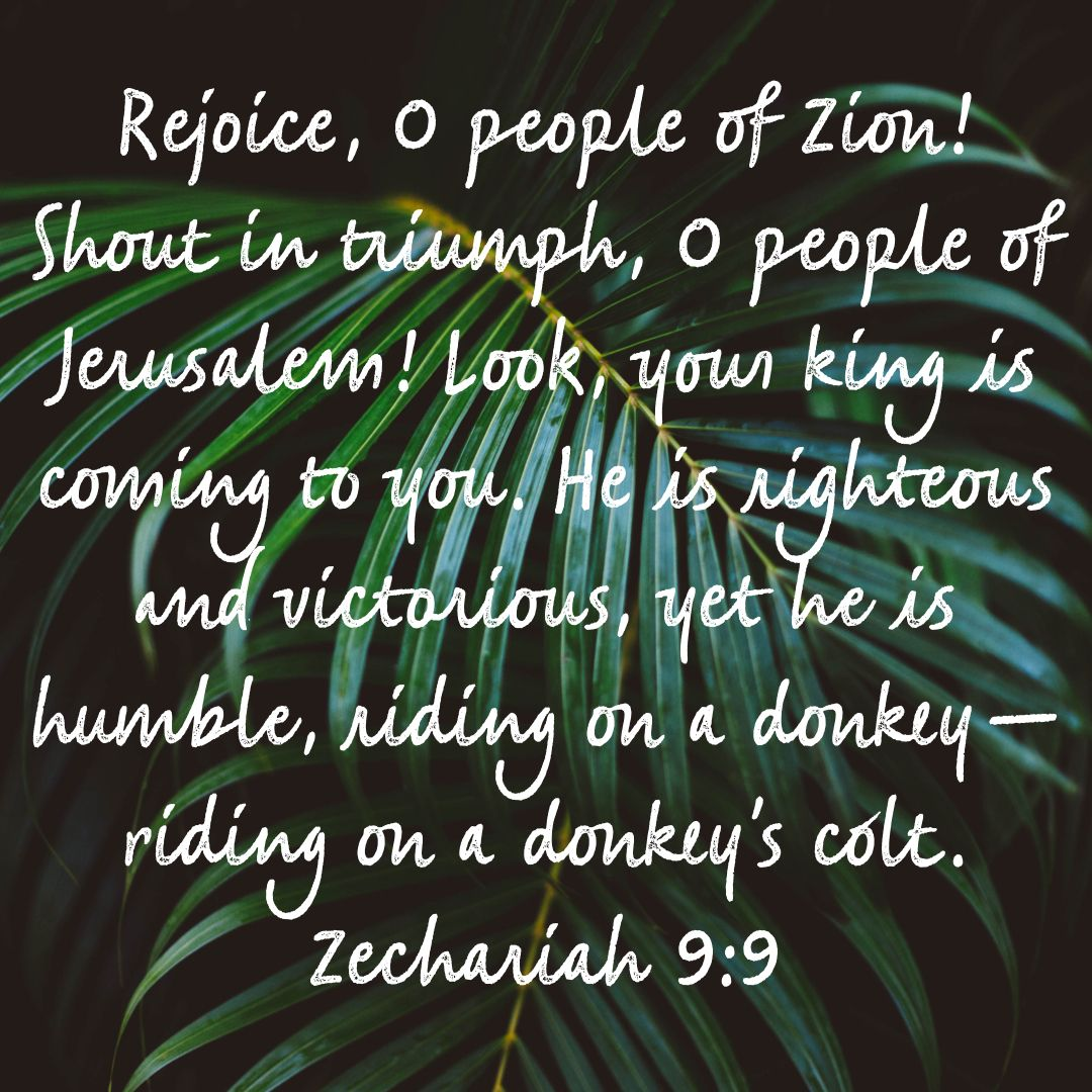 Kuvahaun tulos haulle Zechariah 9:9