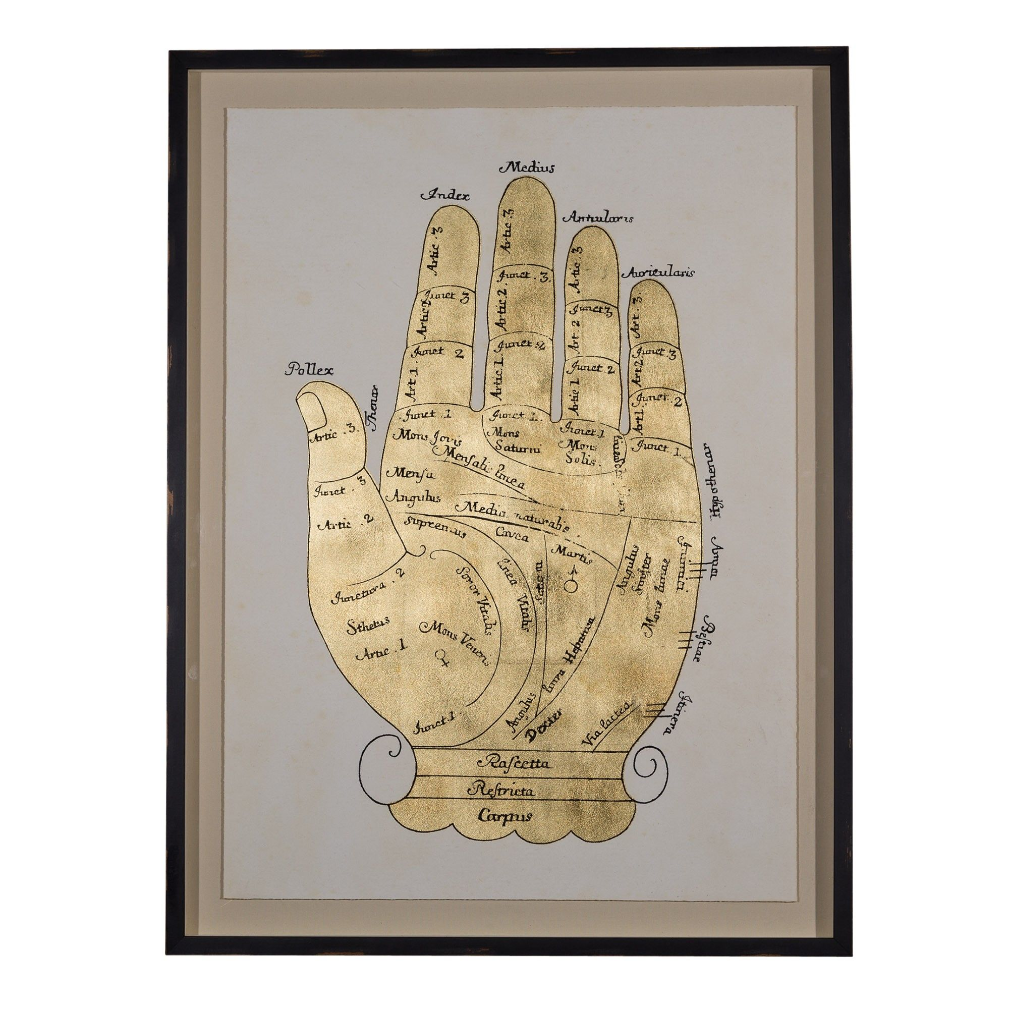 Gallicus Hand artwork in shimmery gold with white background and ...