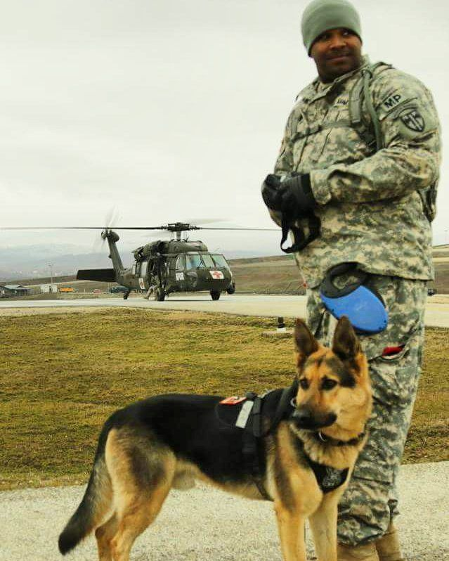 Mwd Hope You Re Doing Well From Your Friends At Phoenix Dog In