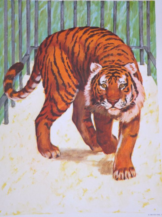 Teaching Pictures Tiger Picture Tiger Art by VintagethatsMintage