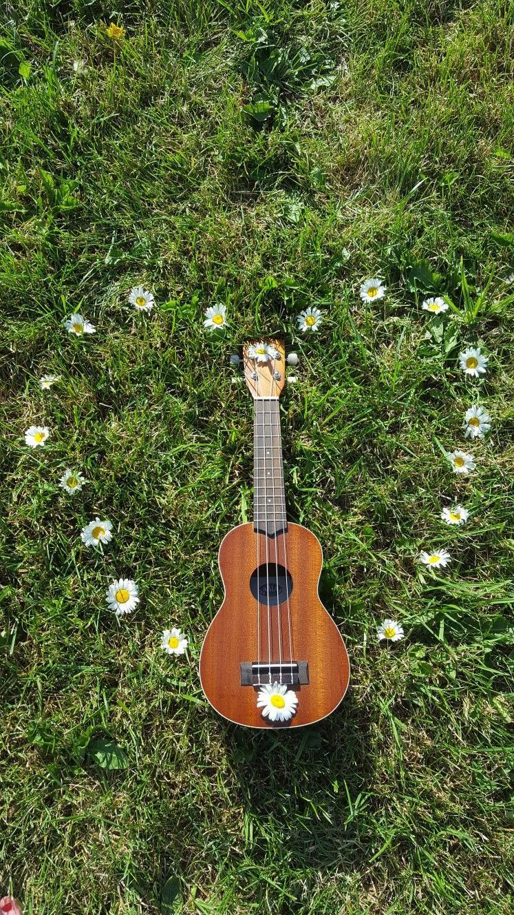 Best quality acoustic guitars lessons