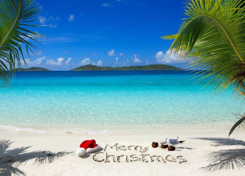 Tropical Christmas.Tropical Christmas Beach Tropical Christmas Christmas