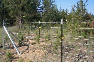 How To Install Wire Fence With T Posts | How To Install 4 Foot Tall Field Fencing With T Posts Fields