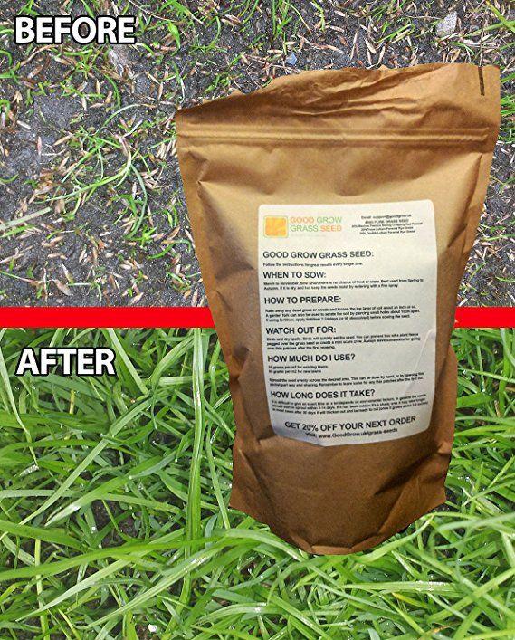 Hard Wearing Grass Seed Fast Growing Premium Grass Seed Tough