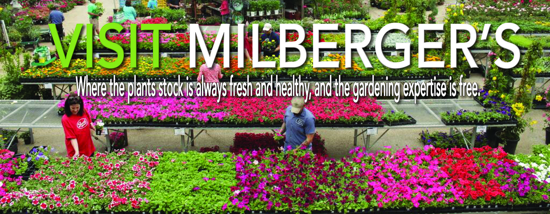 Milberger S Landscape Nursery