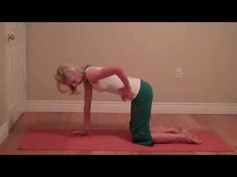 spinal stretches cat/cow wag the tail  twisted