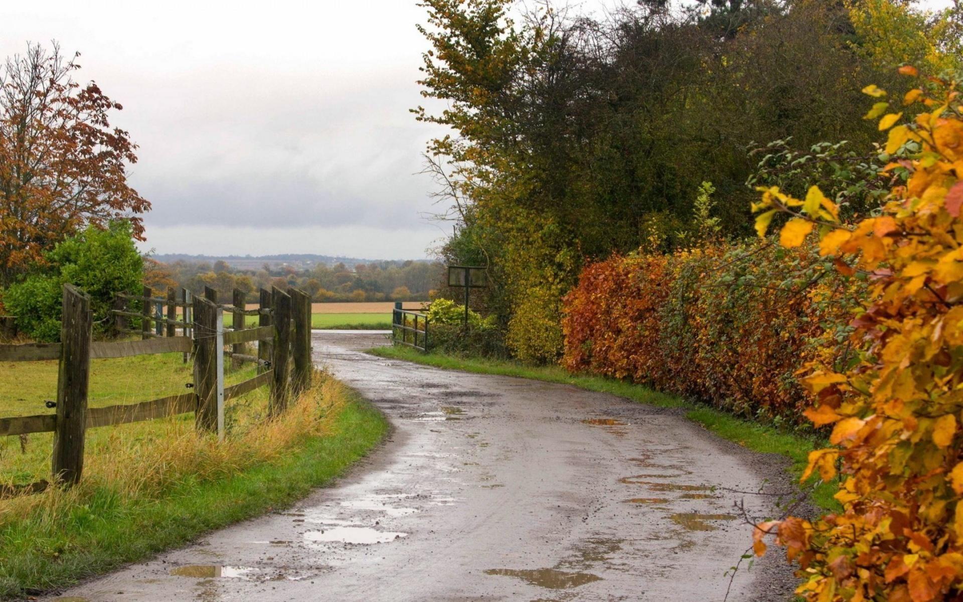 Image Result For High Resolution Autumn Rain Wallpapers Winter Landscape Landscape Landscape Trees