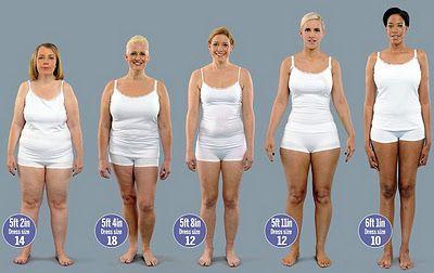 1 livre de muscle versus 1 livre de gras