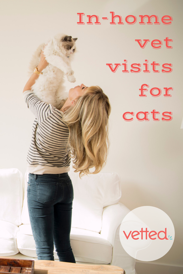See an experienced veterinarian in the comfort of your own