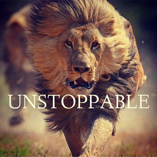 Motivational Quotes With Lion Images: Unstoppable Quotes - Google Search