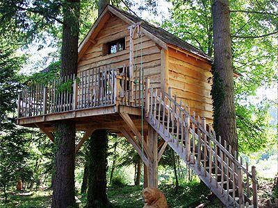 cabane ours tree houses pinterest arbre cabane cabane y chalet. Black Bedroom Furniture Sets. Home Design Ideas