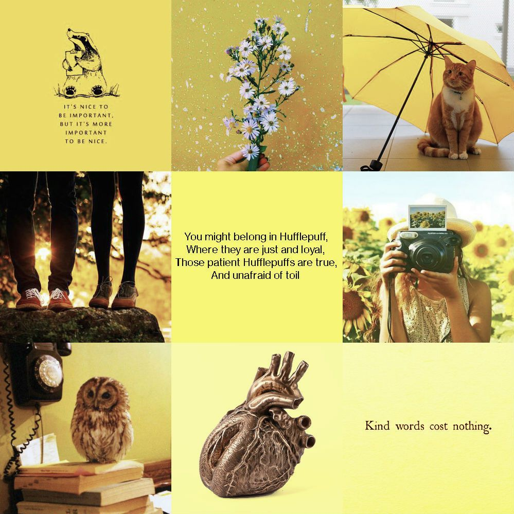 You might belong in Hufflepuff, Where they are just and loyal, Those patient Hufflepuffs are true And unafraid of toil;