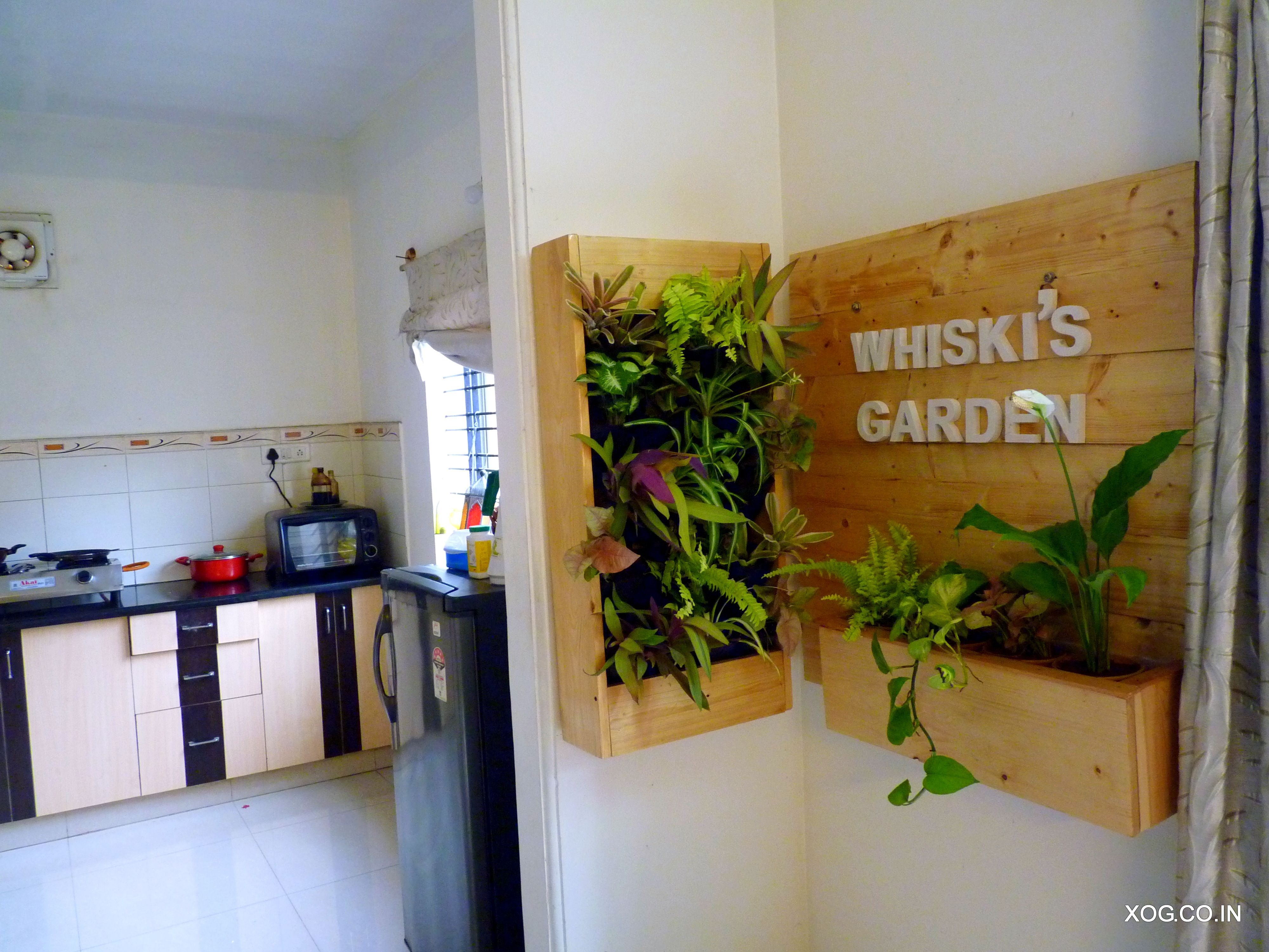 Name plate planter and Vertical Garden by www xog co in