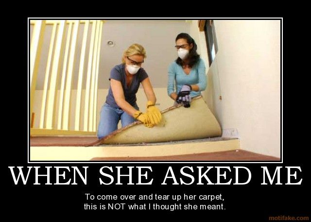 When She Asked Me To Come Over And Tear Up Her Carpet Funny Lesbian Quote Lesbian Humor Lesbian Quotes