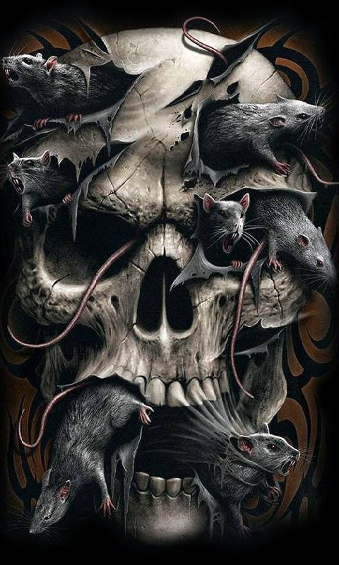 Mobile Phone 240x320 Skull Wallpapers Hd Desktop Backgrounds S