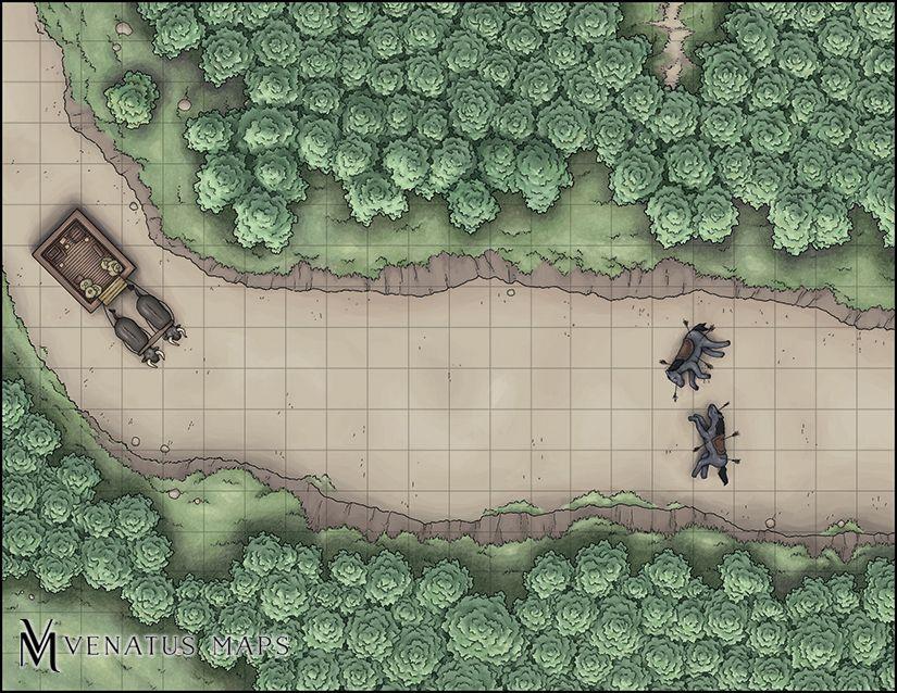 Fantasy Goblin Ambush Battle Map Lmop – Home Garden And Kitchen