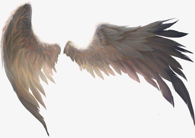 A Pair Of Birds Wings - #Birds #Pair #Wings