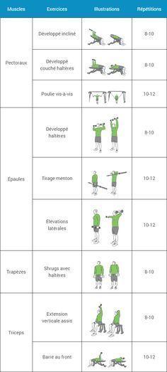 Programme Musculation Débutant - Espace-Musculation Programming