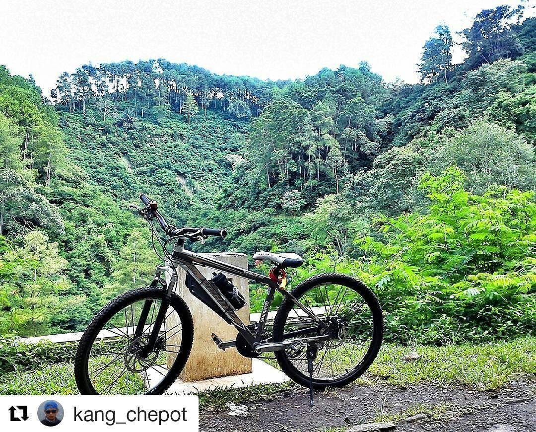#Repost @kang_chepot  menikmati #suasana #pacificbikes #pacificbikerider #sepeda #sepedagunung #bersepeda #gowes #hardtail #mountainbike #mtbindonesia #crosscountry