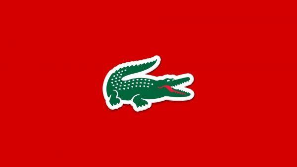 Lacoste Logo 1920x1080 Wallpaper Animal Hayvanlar Clothing