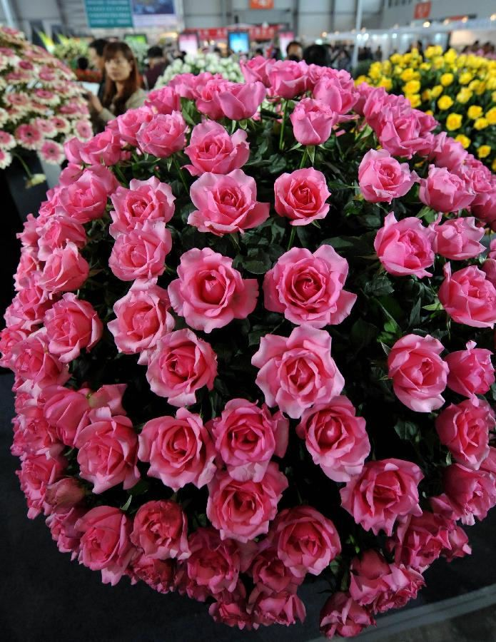 15th China International Flower Exhibition Kicks Off In Kunming 4 People S Daily Online Kunming Flowers China