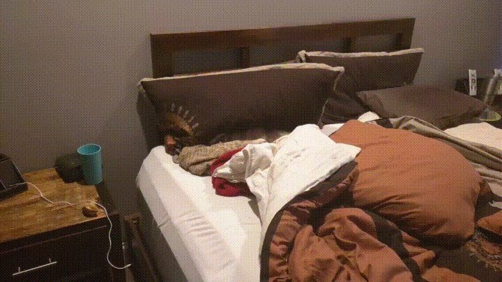 Bailey's new spot to sleep when mom leaves http://ift.tt/2kYemDg