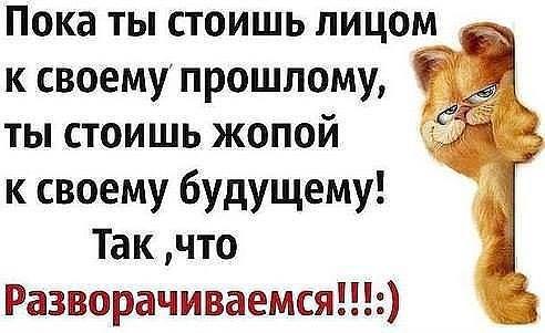 Elena Solnyshko Ha Ha Ha Ok Ru Yumornye Citaty Yumoristicheskie Citaty Sluchajnye Citaty