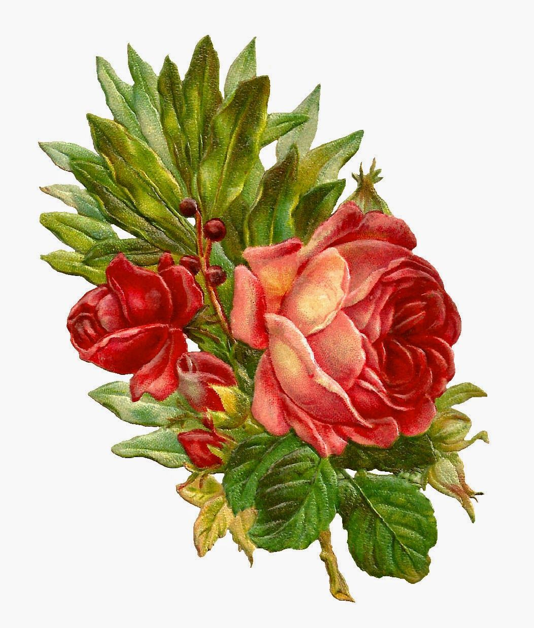 Antique Images: Free Digital Flower Clip Art of Red Rose Bouquet ...