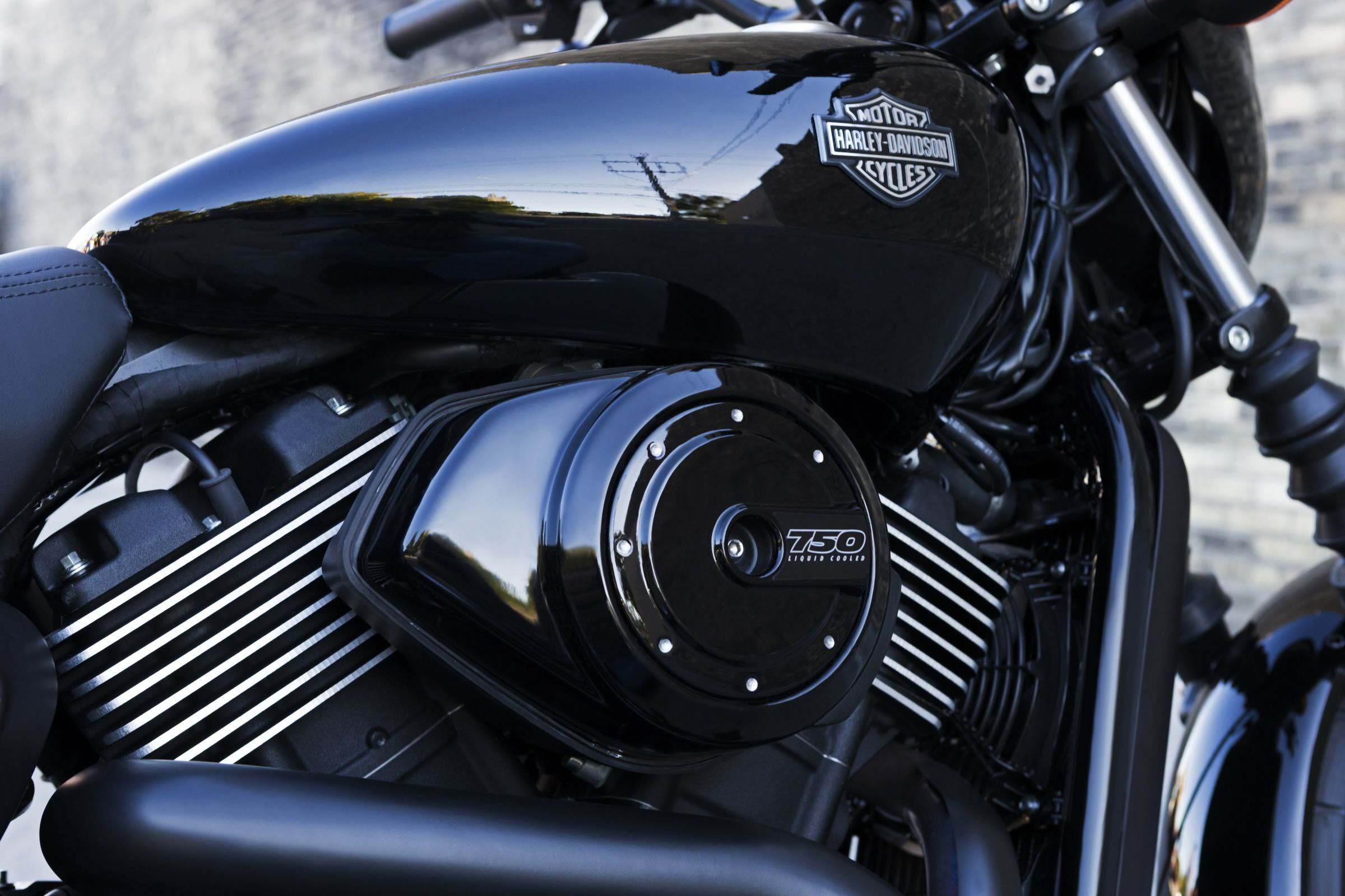 The all new revolution x engine is pure harley davidson v twin muscle