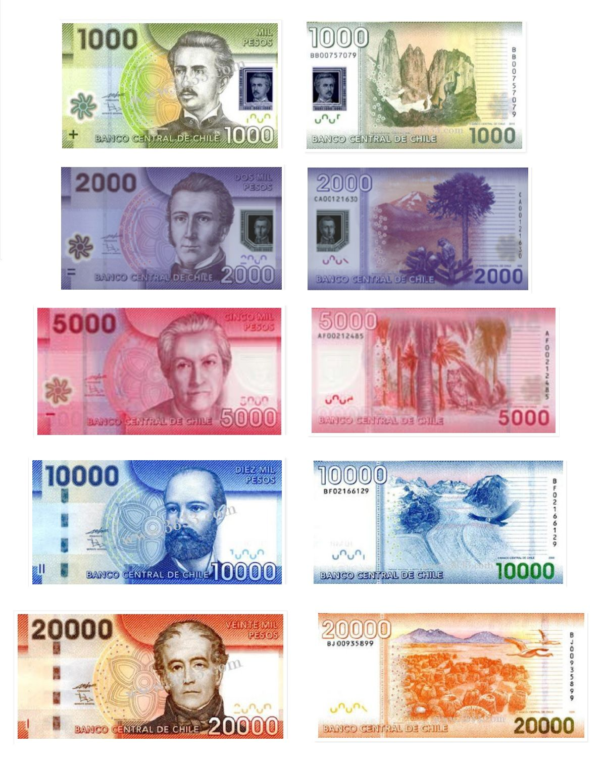 Chilean Pesos And Currency Exchange