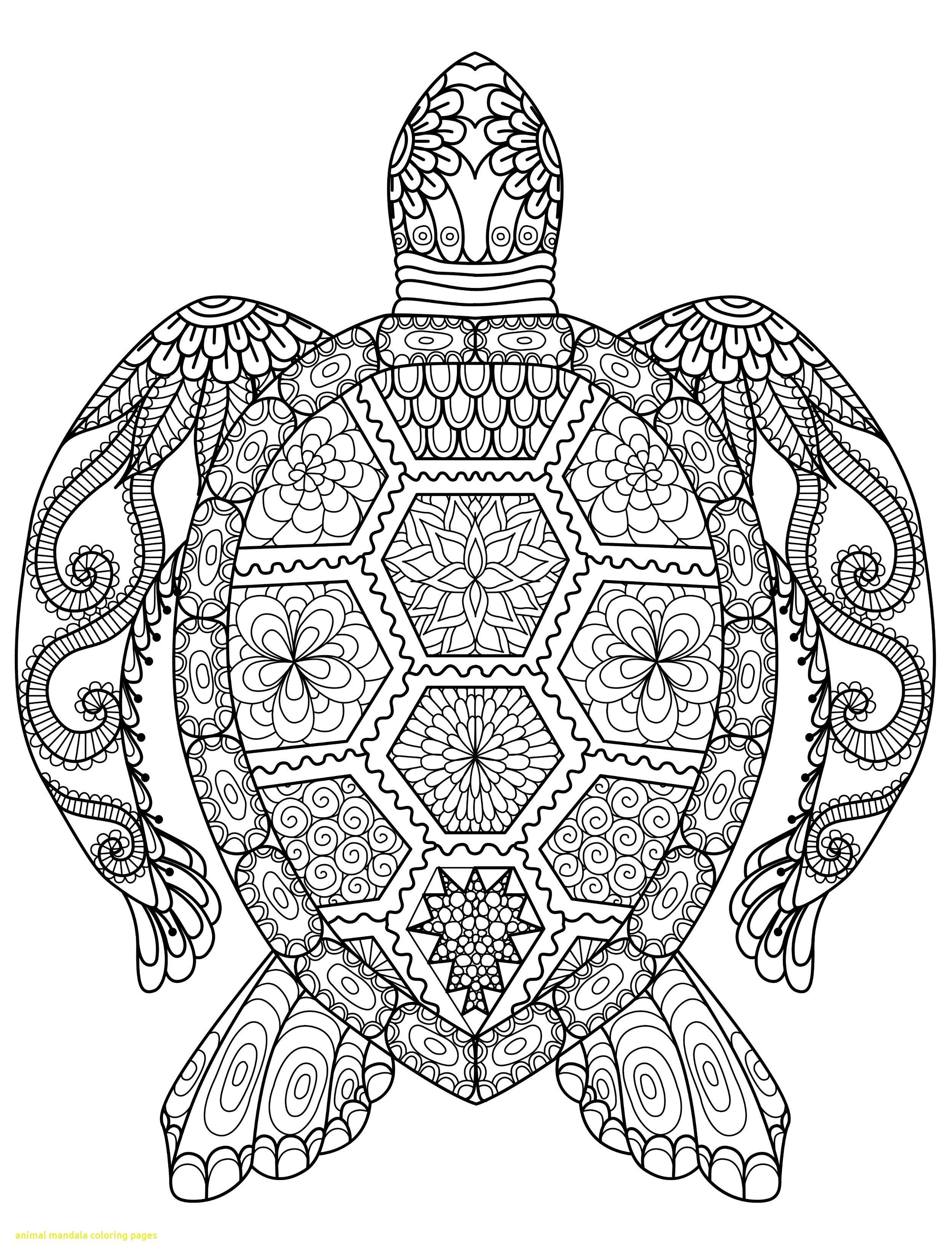 24 Creative Photo Of Mandala Coloring Page Turtle Coloring