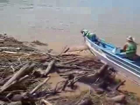 Retirada troncos presos no cais do Porto Hidroviário do Cai N'Água -  em...