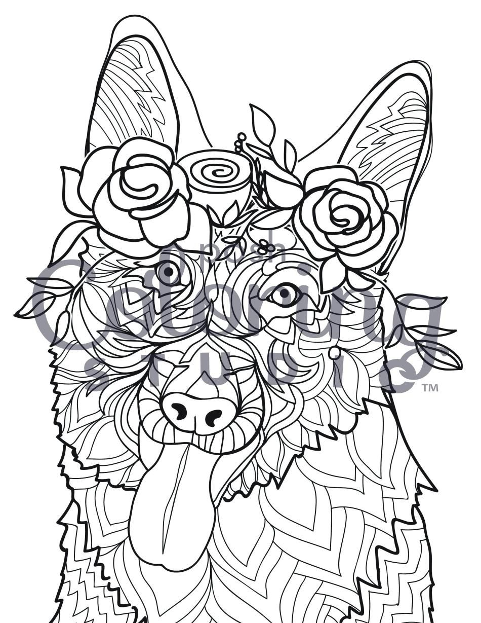Pin On Posh Coloring Pages