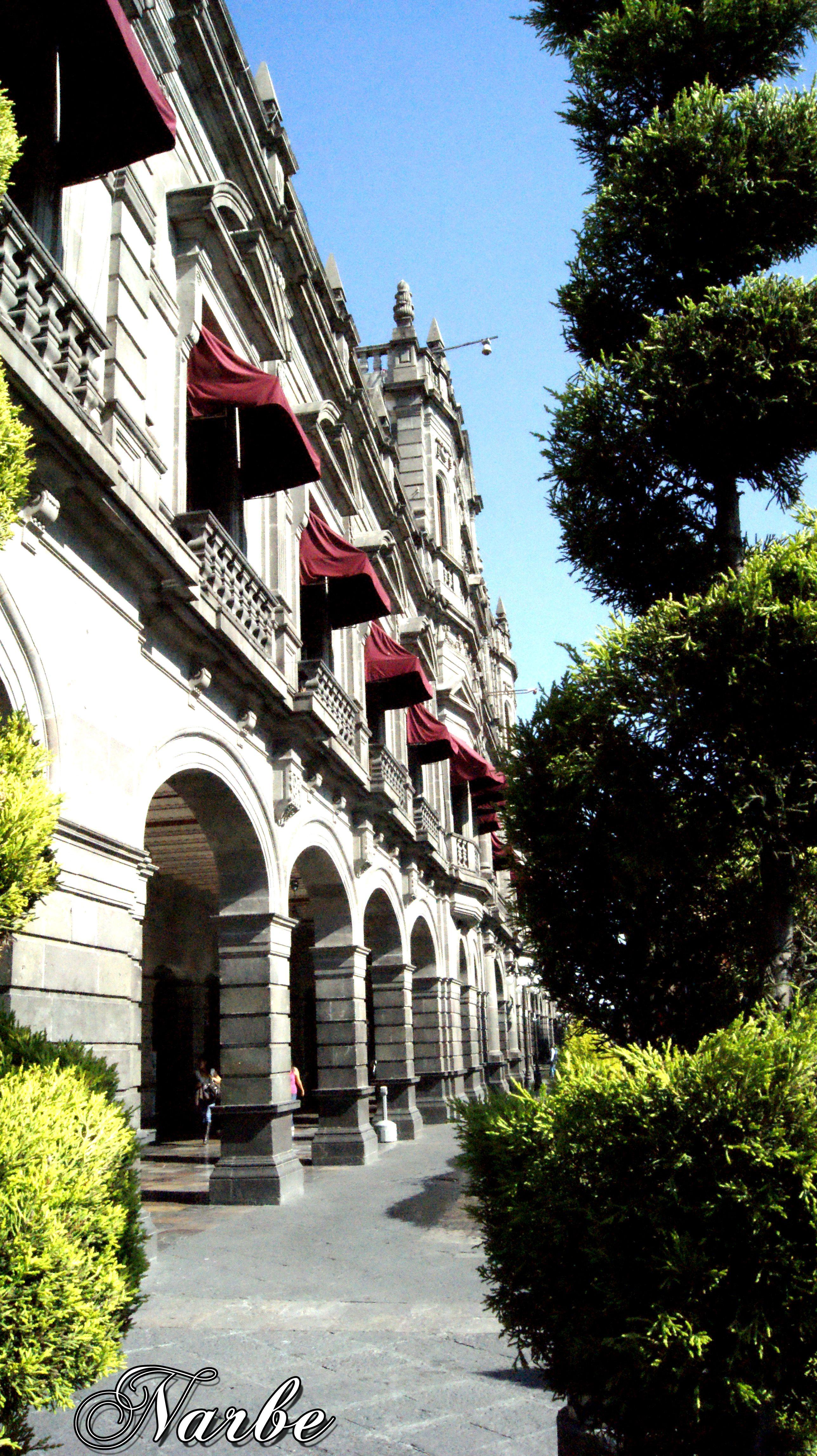 perfil palacio