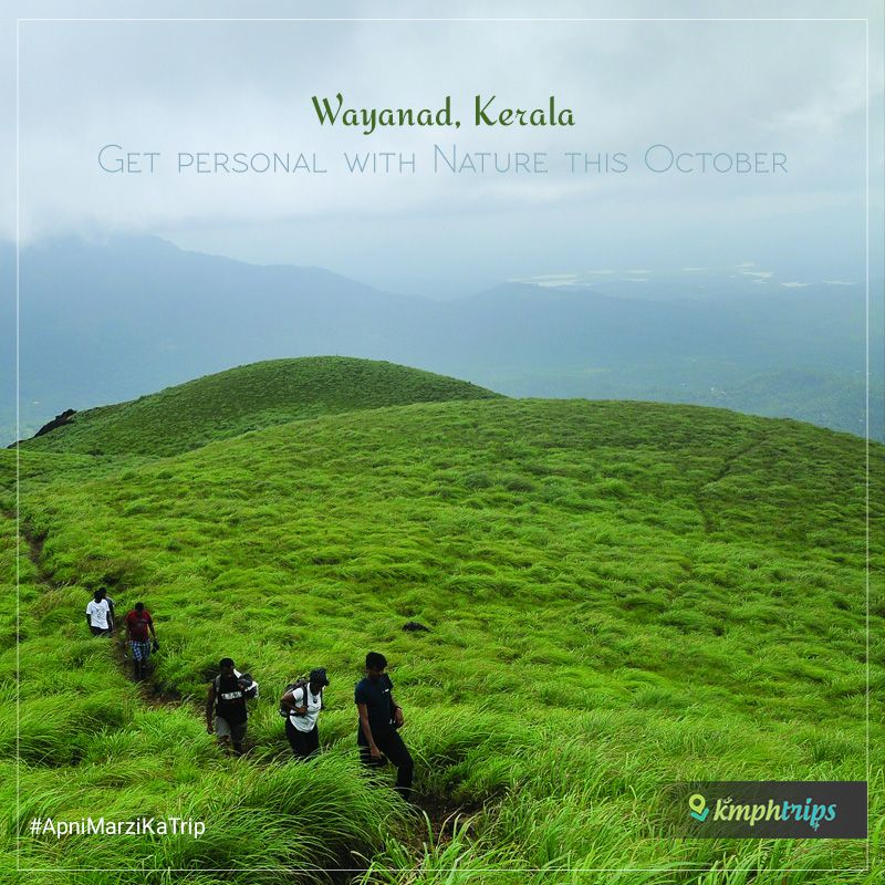 Wayanad is great for a peaceful weekend getaway, especially in October. Wayanad is located in Northern Kerala and it borders Karnataka to its west.... #KmphTrips #ApniMarzikaTrip