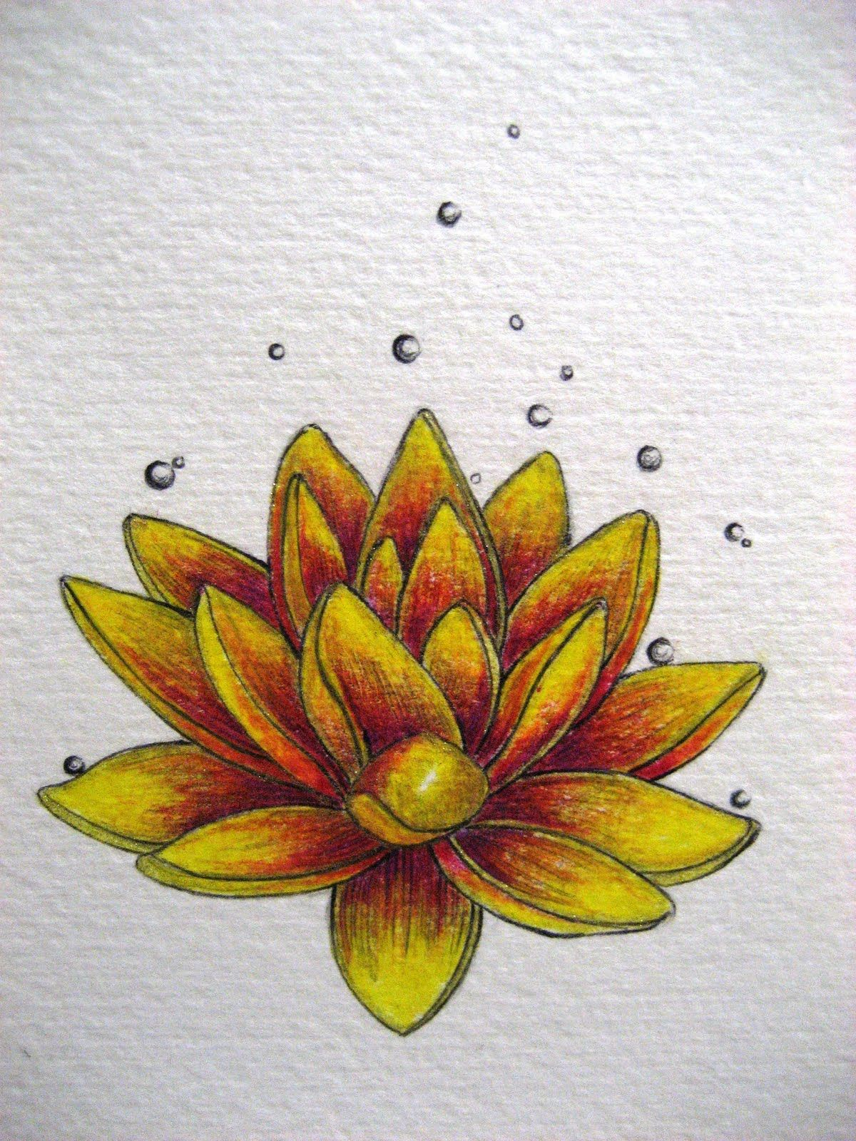 Lotus symbol of birth and rebirth purity beauty things i lotus symbol of birth and rebirth purity beauty buycottarizona