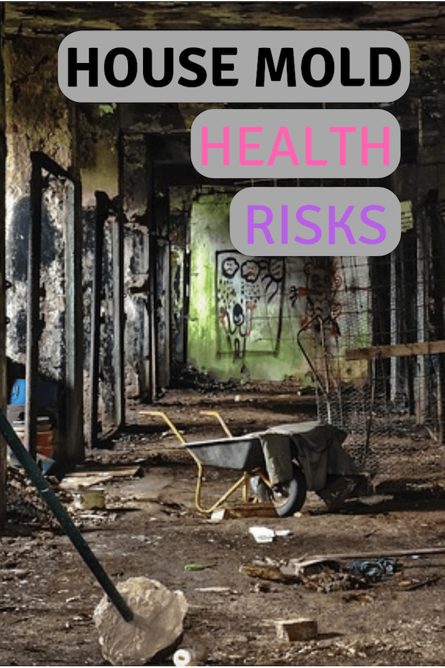 Mold In House Health Risks (Toxicity, Allergies, Asthma