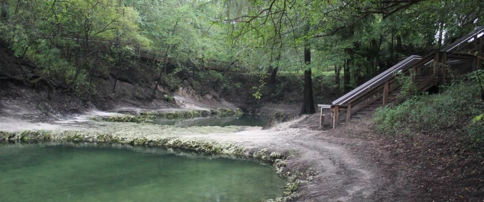 Lafayette blue spring pools with images florida state