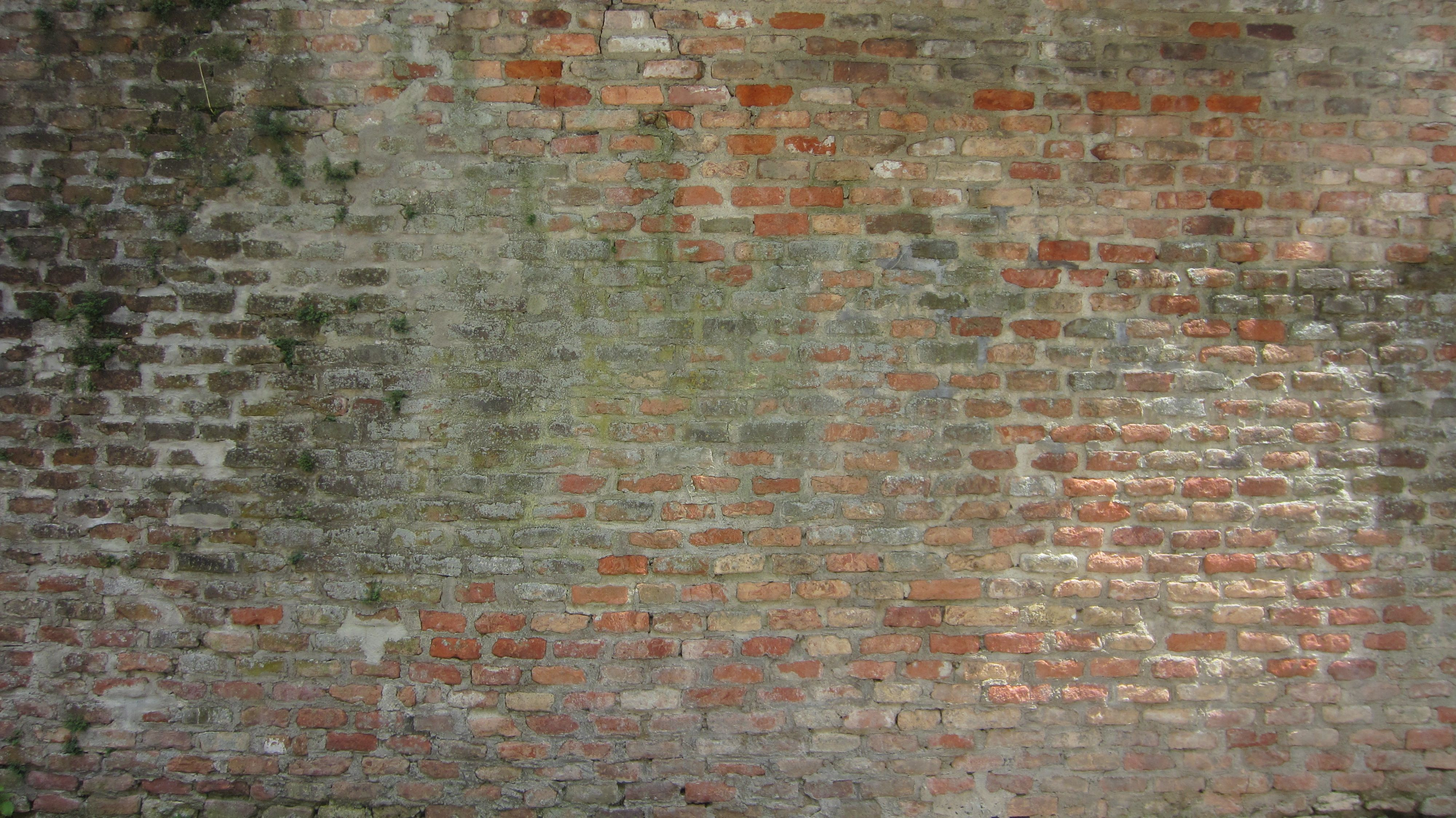 wall brick texture - Buscar con Google | *Walls* | Pinterest ...