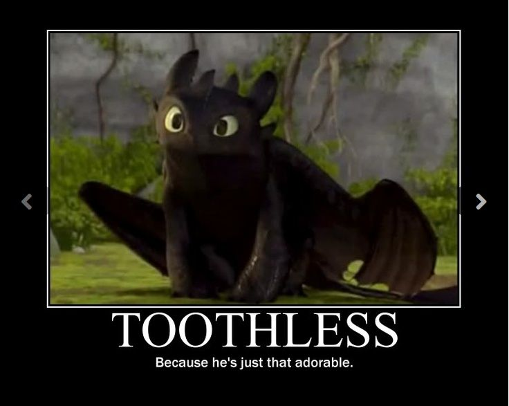 Toothless The Night Fury From How To Train Your Dragon So Cute