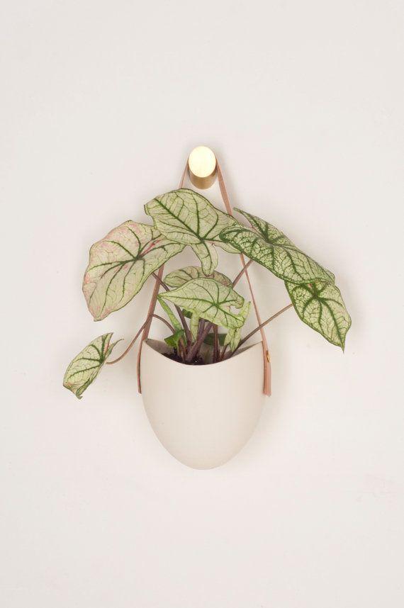 Luxury Brass Plant Hook