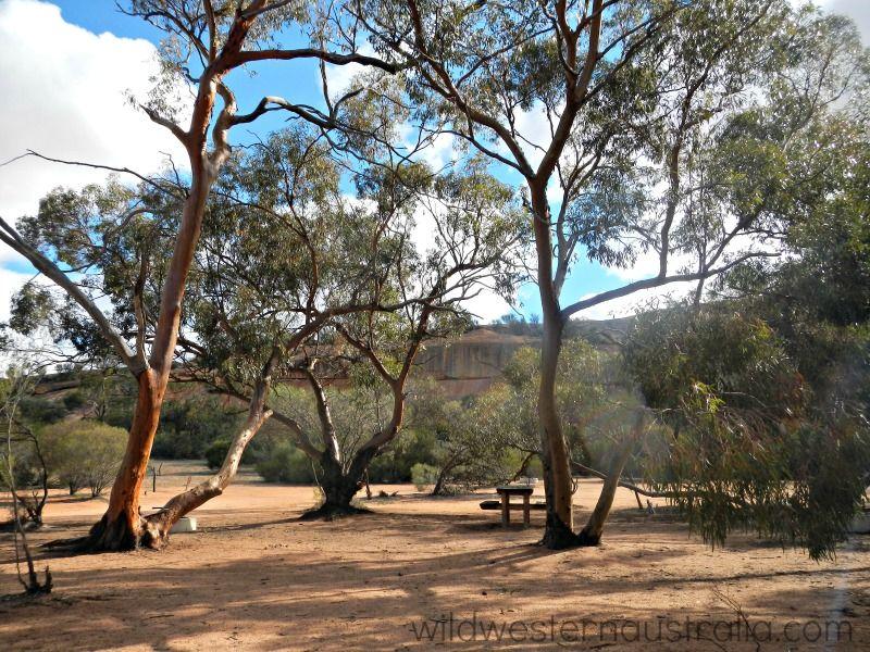 Contact support picnic area australia western australia