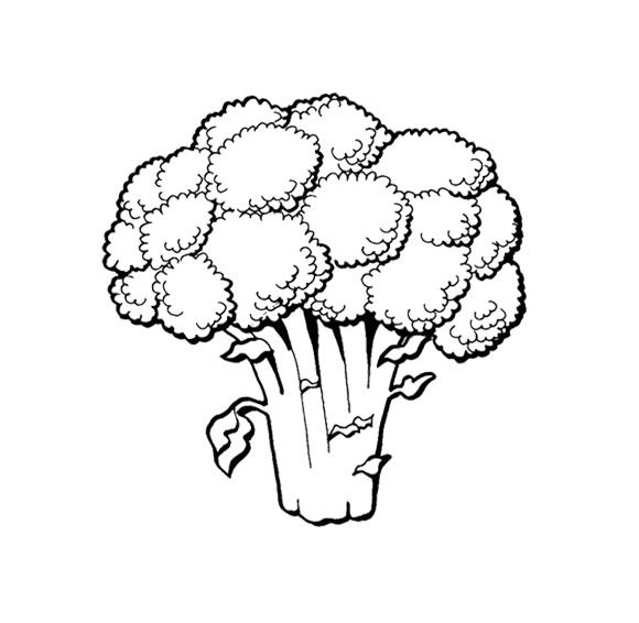 Vegetables Contain Fiber Coloring Page For Kids | Kids Coloring ...