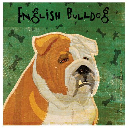 Thirstystone Occasions Drink Coasters, Set, Bulldog, Multicolor