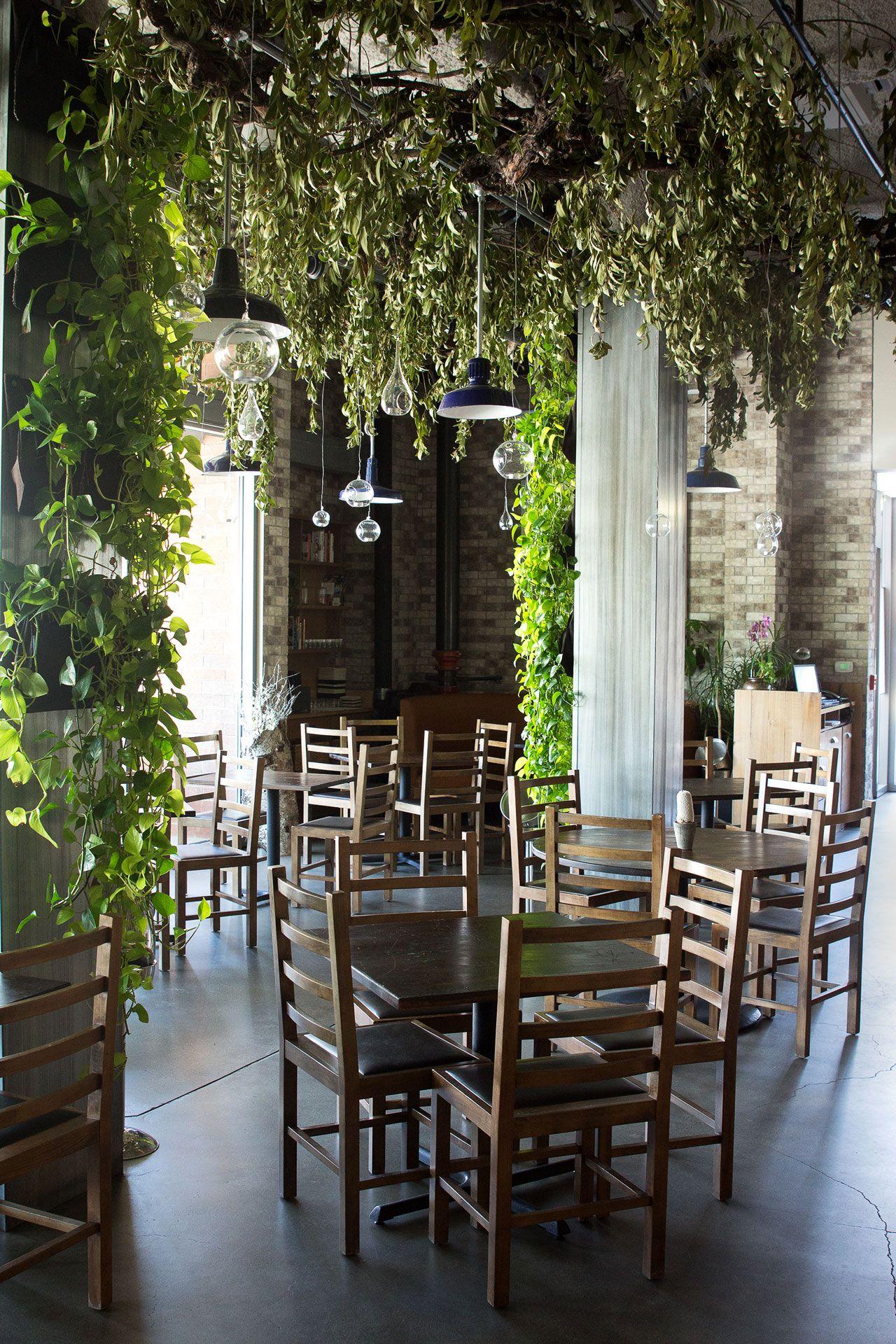 Haven Indoor garden, Garden cafe, Outdoor decor