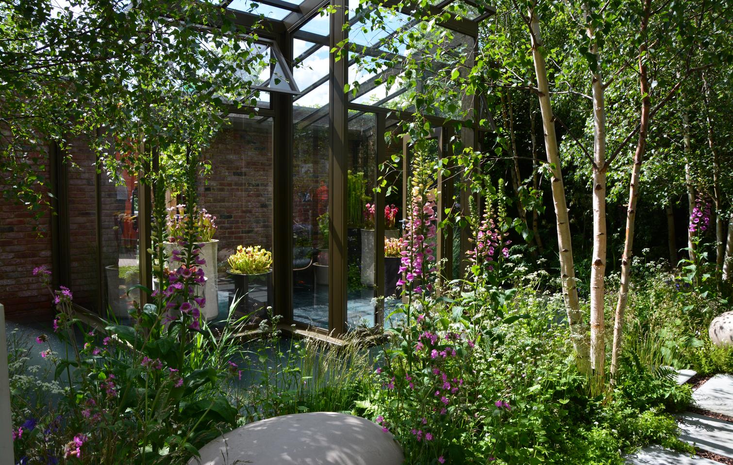 Sådan får du din egen skovhave (med billeder) Haveideer