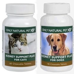 Pin On 8 Cat Meds And Remedies