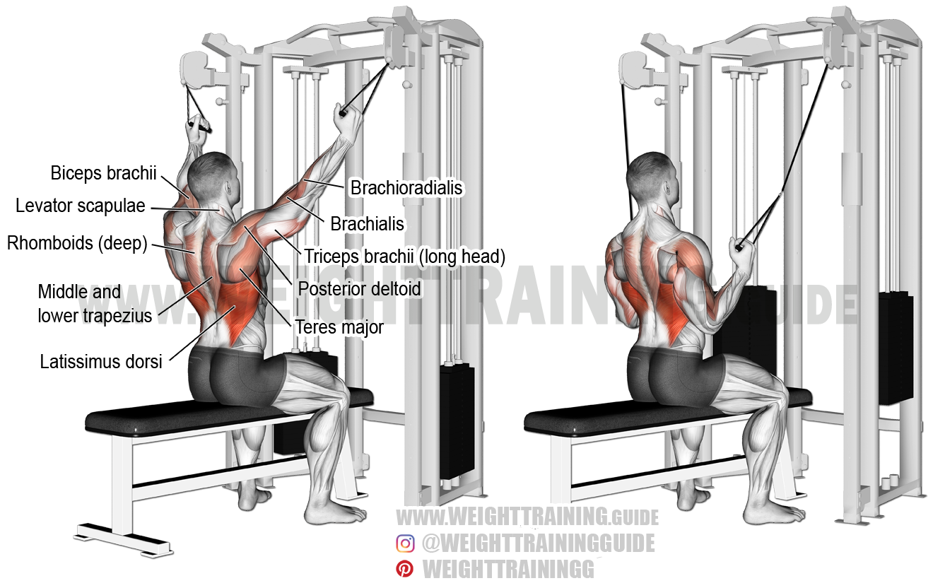 Double Cable Neutral Grip Lat Pull Down